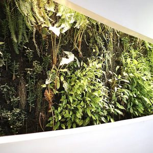 Biophilic Design home design trend